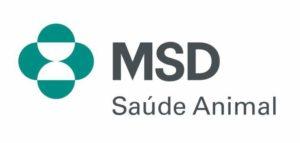 MSD banda para eventos corporativos banda para eventos sp